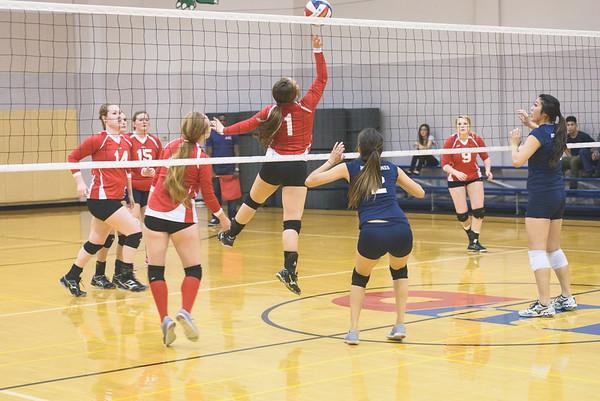 HCSC Volleyball Tournament 4-19-15