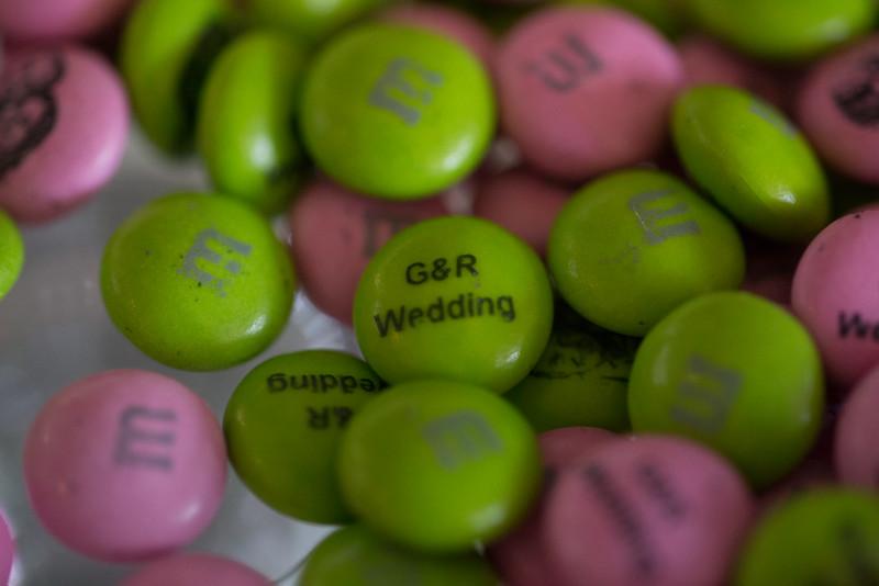 Roshni&Gareth-0814_492.jpg