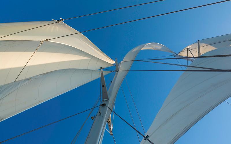 SY Arabella Sails