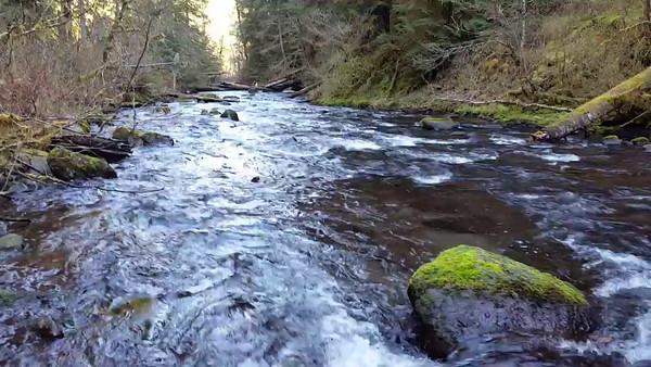 Hillockburn Trail