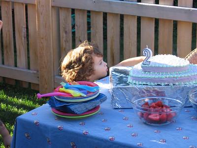 Amelia's Second Birthday