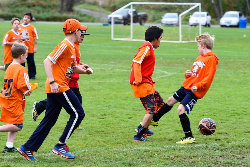Westmount Soccer-4.jpg