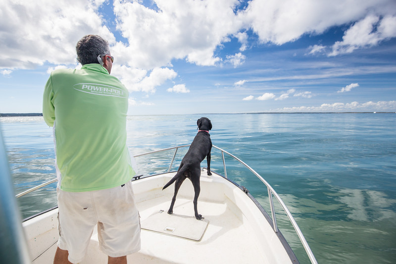 Wilson Kerr and Lunabelle on point, spotting fish. Chasing Martha's Vineyard False Albacore During the MV Derby