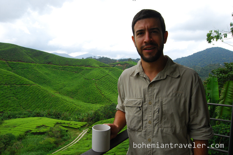 Stephen drinking tea at Boh Tea.jpg