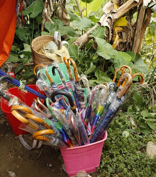 Umbrellas for sale.