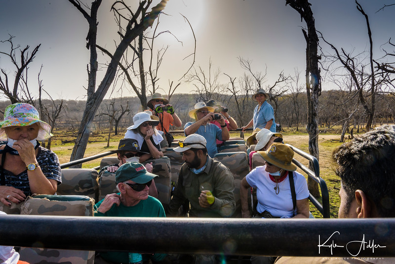 We explored Ranthambore National Park in an open safari vehicle called a canter.  The 115-degree heat, direct tropical sun, dusty environment, and bumpy trails made this a less than comfortable mode of transportation, but we were fortunate to spot lots of game.