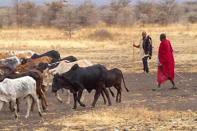 Day3 Masai Village