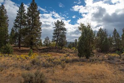 Riley Ranch