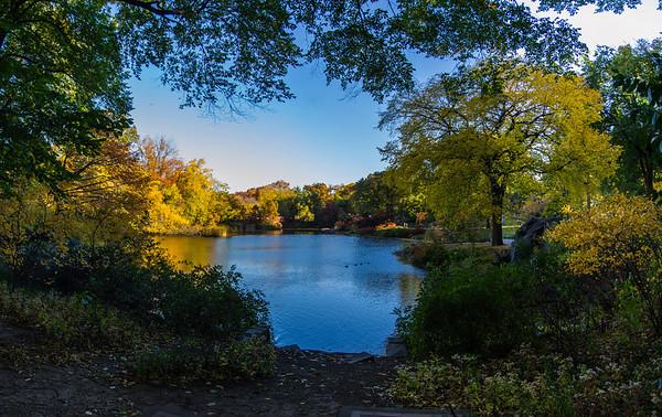 Central Park, NYC - Fall '13 Foliage