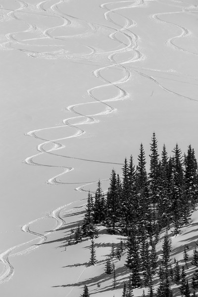 Tracks on Red Mountain in Black and White