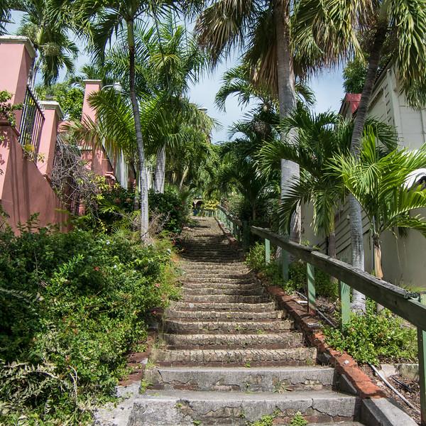 2017JWR-Caribbean-185.jpg