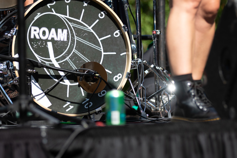 Del Ray Music Festival 299.jpg