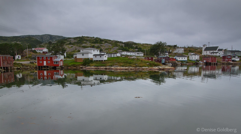 Morning reflections, Salvage, Newfoundland