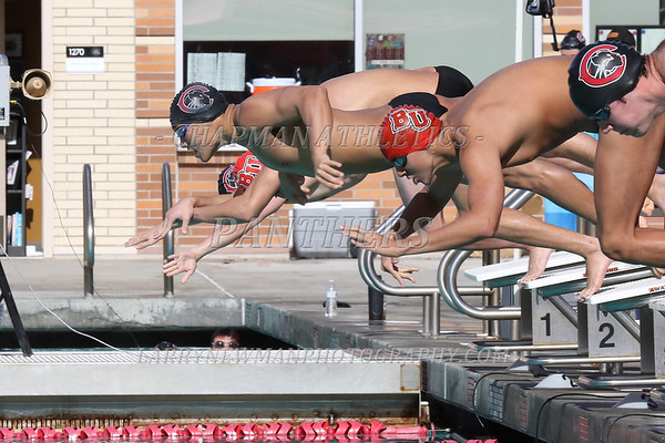 SWIMMING AND DIVING 2018-19