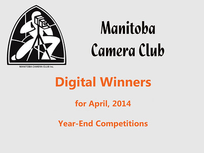Digital Winners for April 2014 (Year-End Competitions)