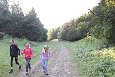 2013 - Midsummers Night Hike