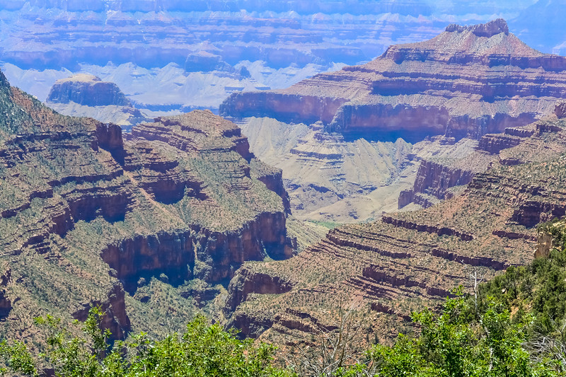 2019 Grand Canyon-232.jpg
