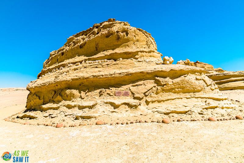 Wadi-El-Hitaan-02375.jpg