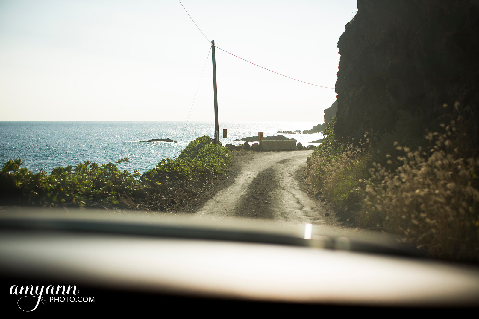 hawaii_amyannphoto_67