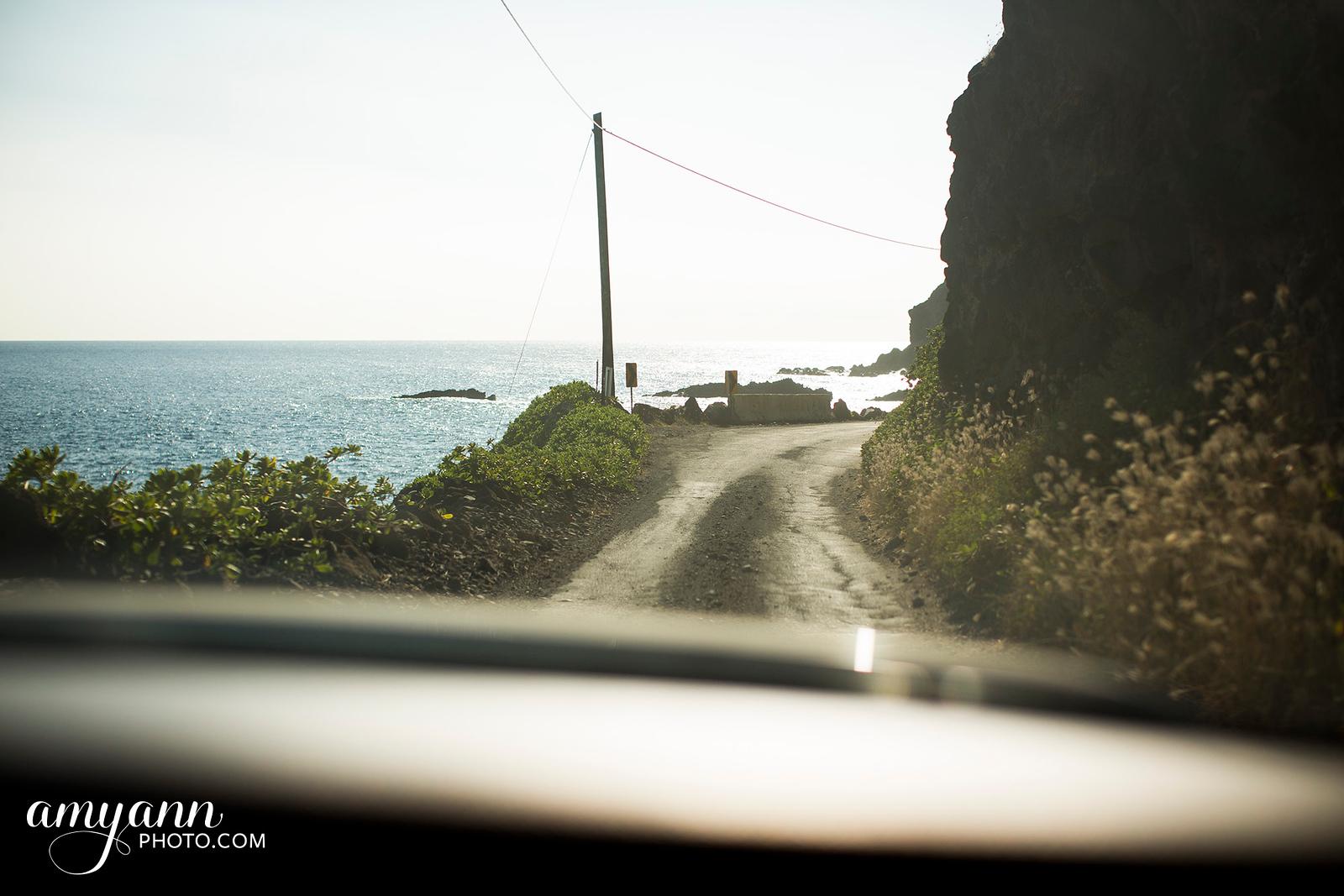 hawaii_amyannphoto_67