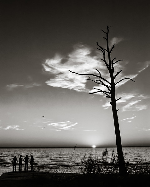 Five Adult Women Stand in Silhouette on a Beach on the James River at Sunset