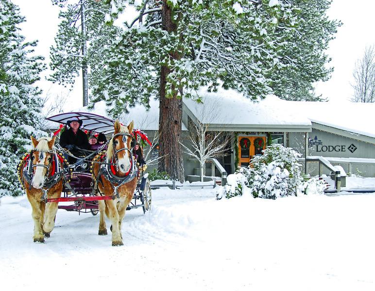 12December12-BBR-Lodge-carriage rides__KateThomasKeown-dsc7607.jpg