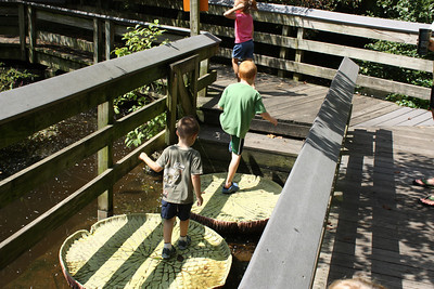2011 - Baltimore Zoo