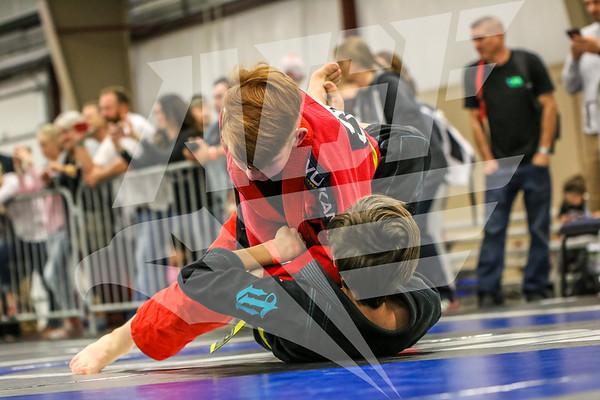 AGF 2017 Arkansas State BJJ Championships