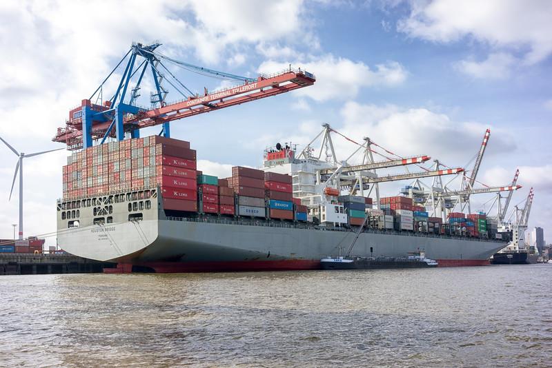 Containerschiff am Containerterminal Tollerort in Hamburg