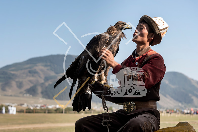 Kyrgyz young man with his hunting eagle during the World Nomad Games 2018