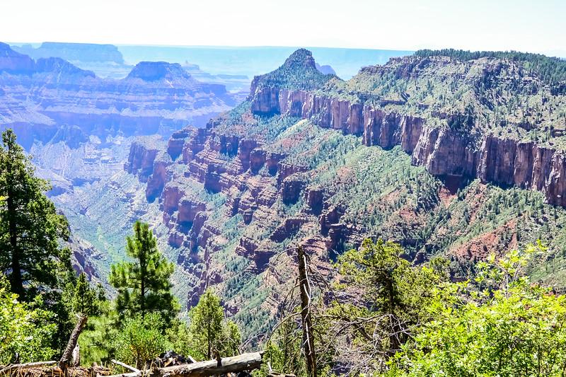 2019 Grand Canyon-211.jpg