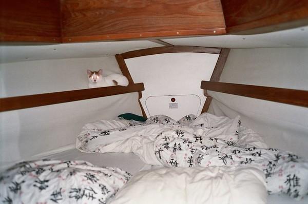 2005 Boat Misc