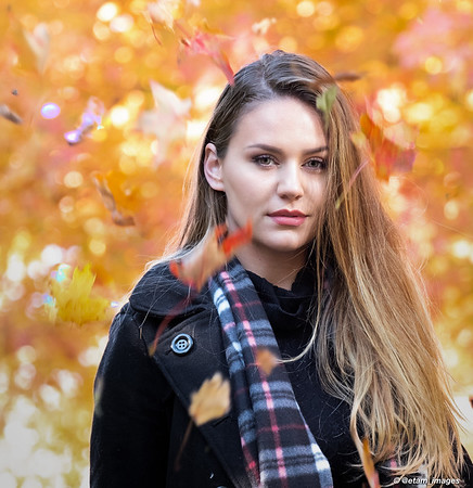 Chloe Fountain - Glorious Fall