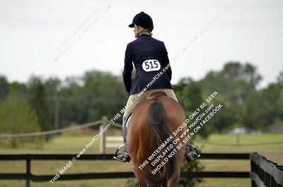 2011-07-17 PSJ Celebration Horse Show