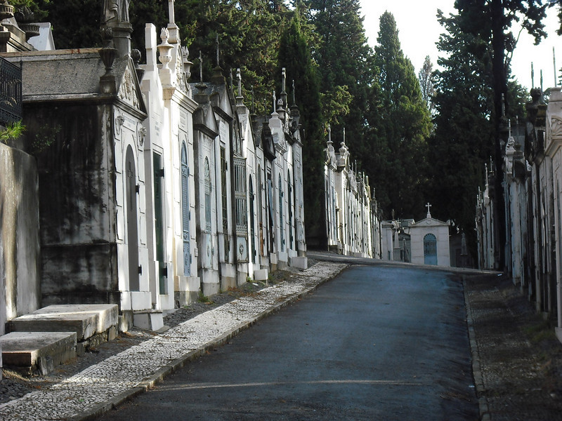Lisbon, Portugal.  We find ourselves in a great cemetery.