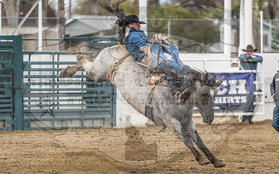 TVCC Spring Rodeo - Sunday