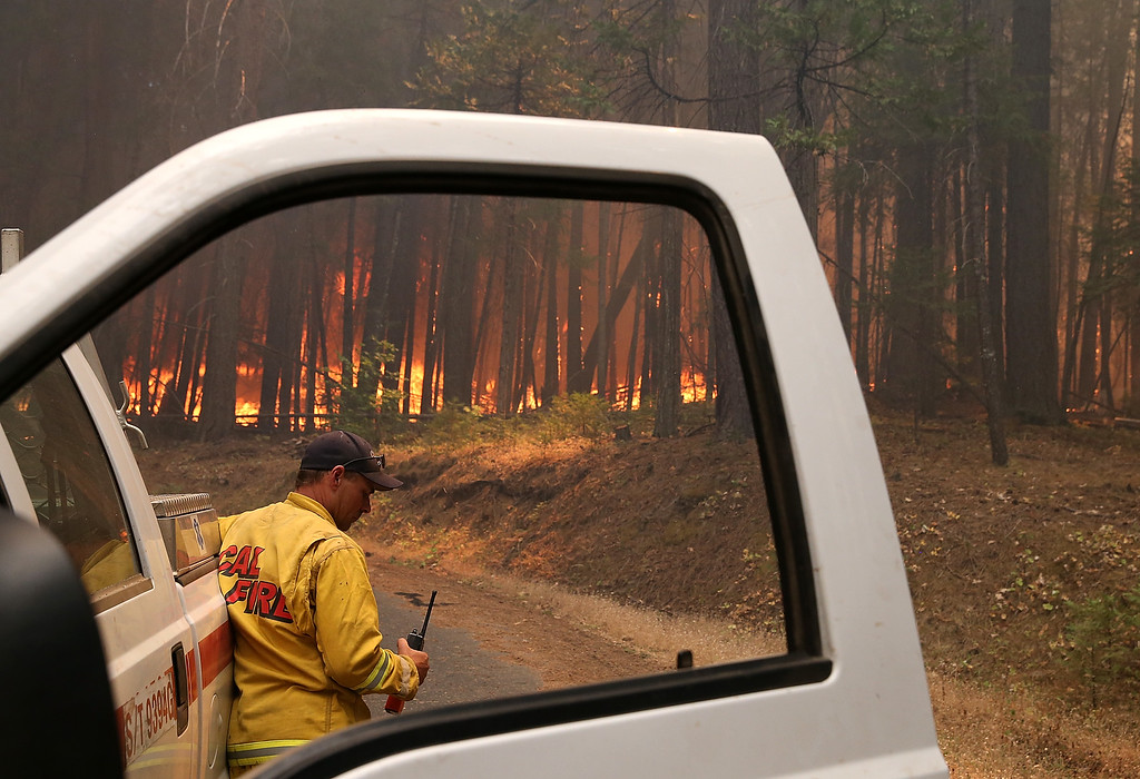 . A Cal Fire firefighter monitors the Rim Fire as it burns through a grove of trees on August 25, 2013 near Groveland, California. The Rim Fire continues to burn out of control and threatens 4,500 homes outside of Yosemite National Park. Over 2,000 firefighters are battling the blaze that has entered a section of Yosemite National Park and is currently 7 percent contained.  (Photo by Justin Sullivan/Getty Images)