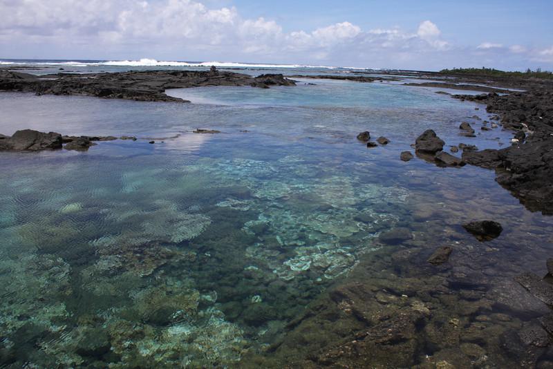 Hawaii_BigIsle_40D 908