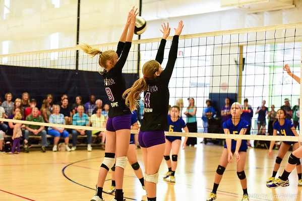 Volleyball 4.18.2015 9am to 4pm