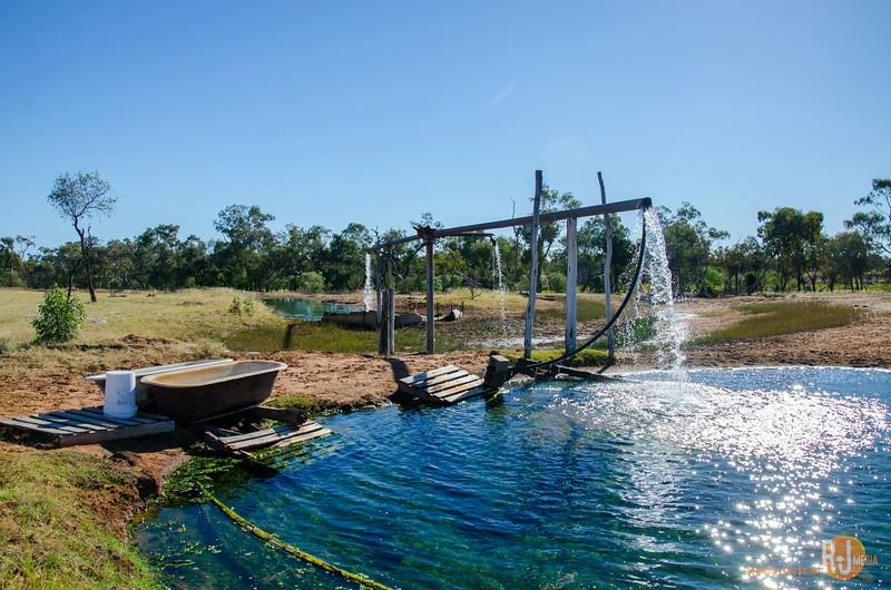 Australia-Queensland-Cunnamulla-4334.jpg