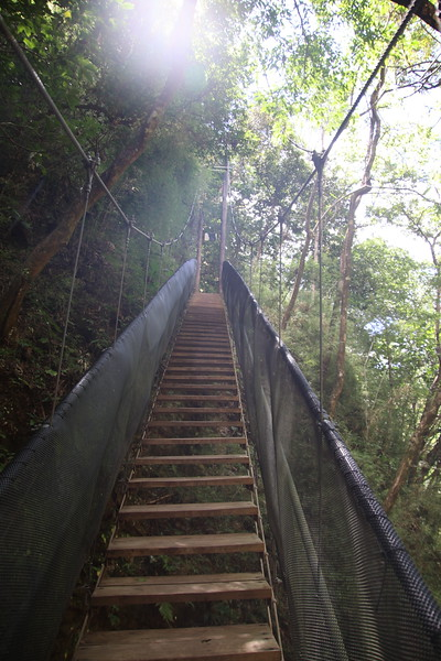 Tropical Costa Rica Hanging Bridges