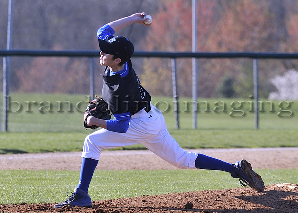 Lincoln-Way East Varsity Baseball: 2015
