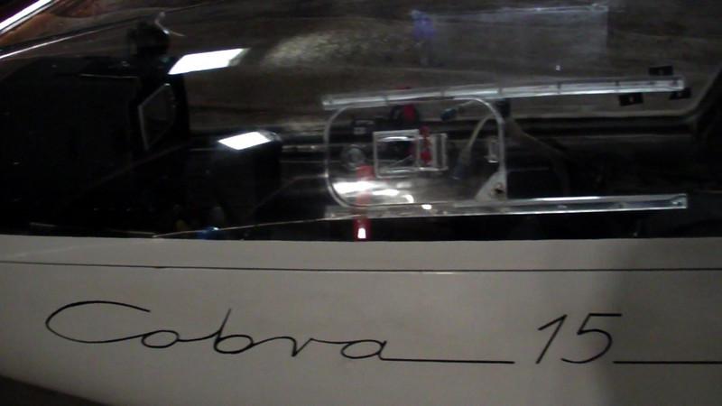 cobra15.jpg