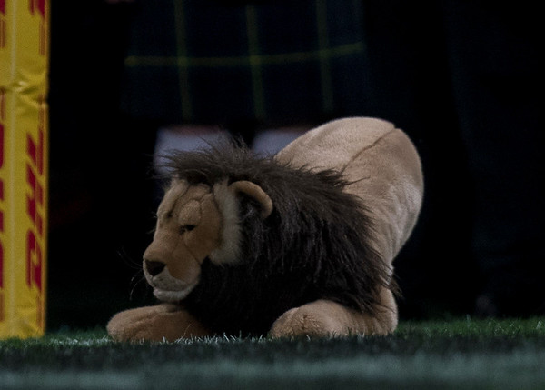 Lion, during game 4 of the British and Irish Lions 2017 Tour of New Zealand,The match between  Highlanders and British and Irish Lions, Forsyth Barr Stadium, Dunedin, Tuesday 13th June 2017 (Photo by Kevin Booth Steve Haag Sports)  Images for social media must have consent from Steve Haag