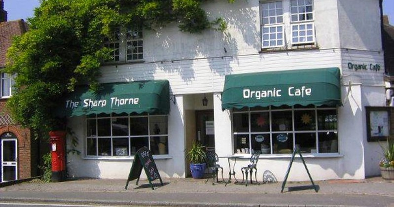 sharpthorne-organic-cafe_1.jpg