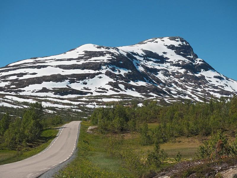 Villmarksveien 29-06-17 (49).jpg