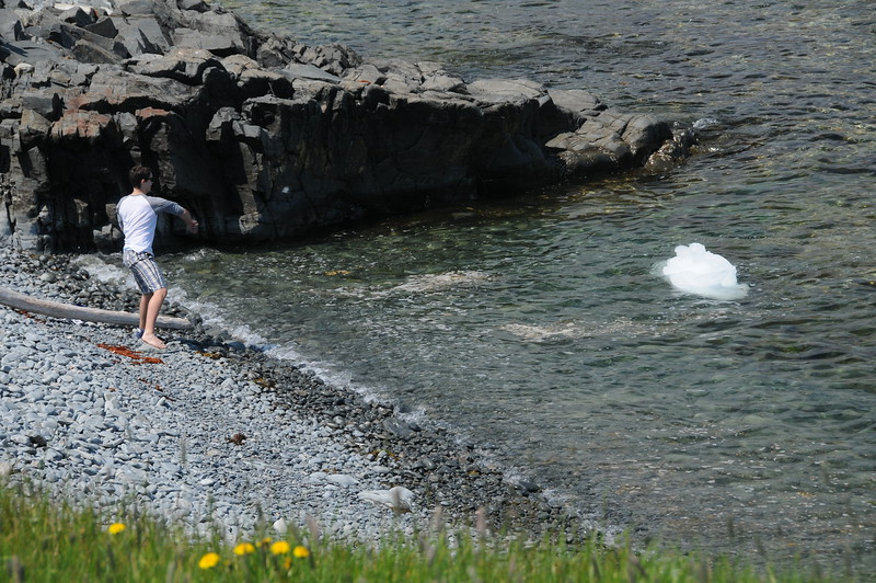 Within a short walk from the info centre we came upon this teenager making attempts to lure this iceberg chunk in closer to shore.