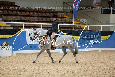 Class 2: Child's Medium Show Hunter Pony over 12 hh up to inc 13 hh