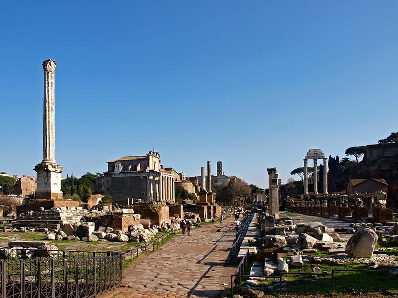 Rome Forum Romanum 30-1-09 (77).jpg