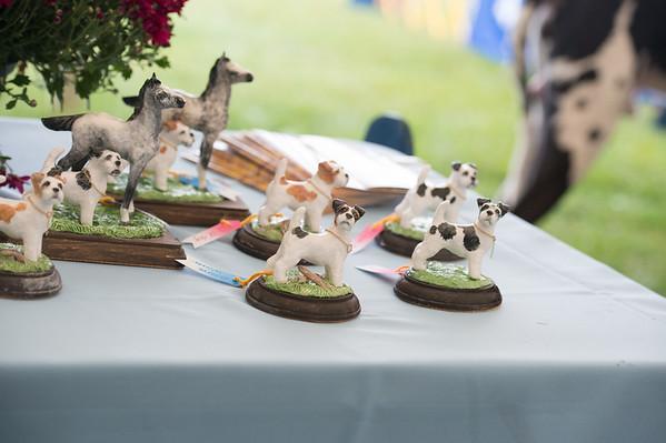 Awards - Devon